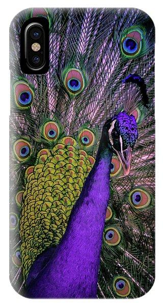 Peacock In Purple IPhone Case
