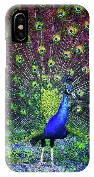 Peacock Series 9801 IPhone Case