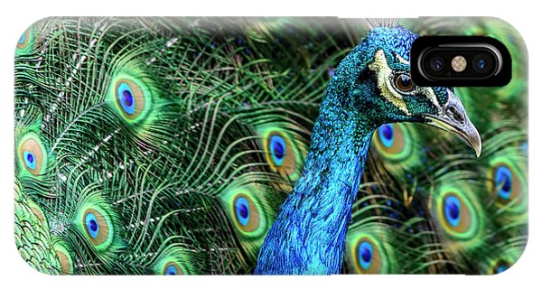 IPhone Case featuring the photograph Peacock by Steven Sparks