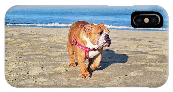 Peanut On The Beach IPhone Case