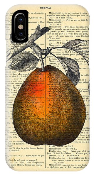 Pear iPhone Case - Pear Fruit Kitchen Decor by Madame Memento