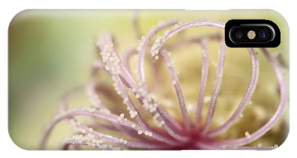 Stamen iPhone Case - Pearly Curls by Sharon Johnstone