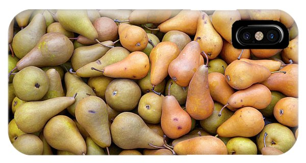 Pears At The Harvest IPhone Case