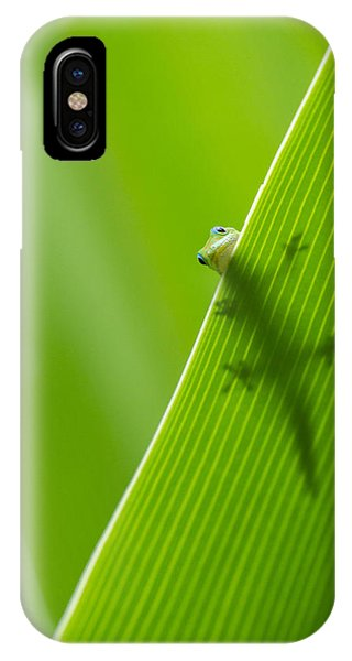 Peek A Boo Gecko IPhone Case