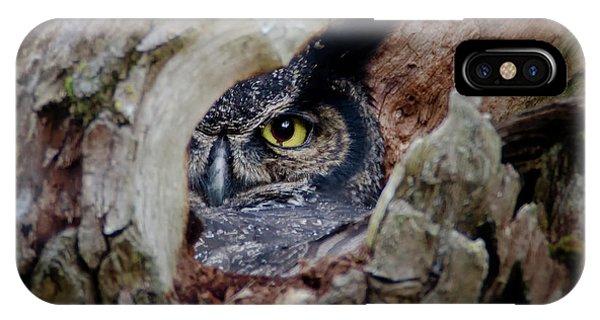 Peek A Boo Owl IPhone Case