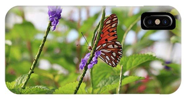Agraulis Vanillae iPhone Case - Peekaboo Butterfly by Carol Groenen