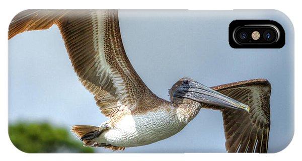 Pelican-4443 IPhone Case