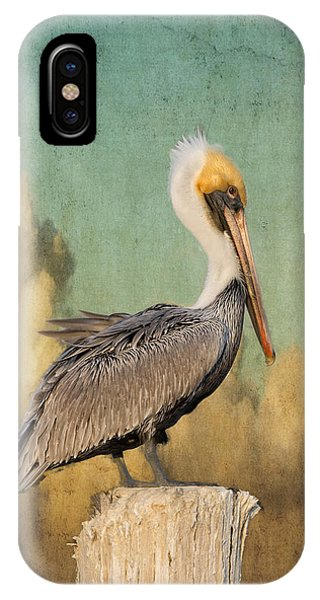 Pelican And Clouds IPhone Case