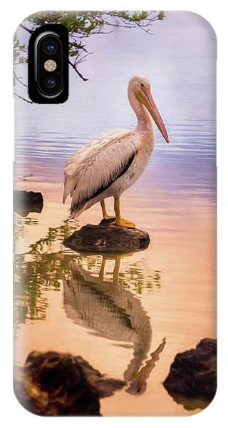 Pelican Connection 2 IPhone Case