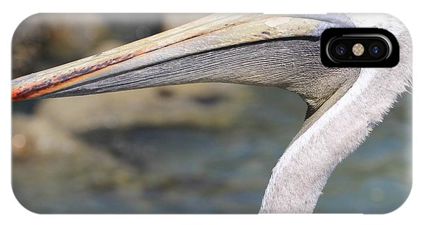 Pelican Face  That Only A Mother Could Love IPhone Case