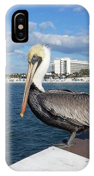 Pelican -florida IPhone Case