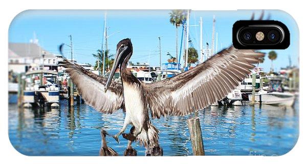 Pelican Flying In IPhone Case