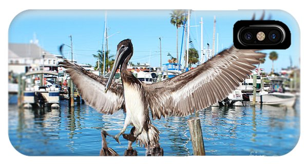Pelican Flying In IPhone Case