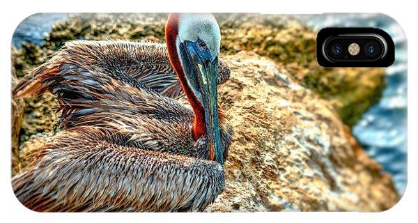 Pelican II IPhone Case