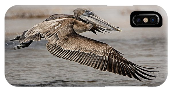 Pelican In The Air IPhone Case