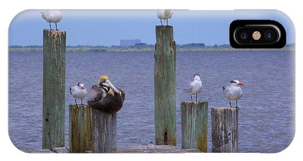 Pelican Incognito IPhone Case