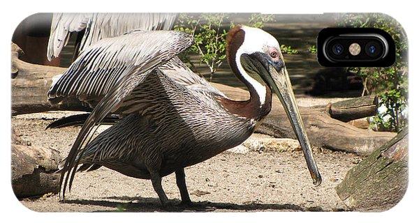 Pelican Island IPhone Case
