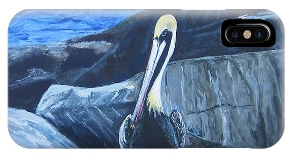 Pelican On The Rocks IPhone Case