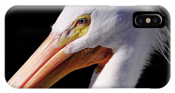 Pelican Portrait IPhone Case