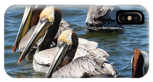 Pelican Profiles IPhone Case
