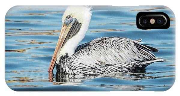 Pelican Relaxing IPhone Case