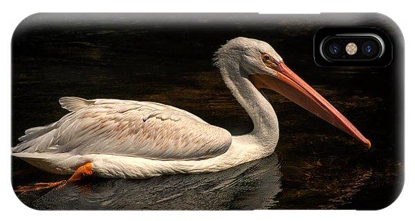 Pelican Swimming In Salisbury IPhone Case