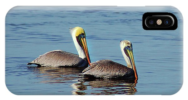 Pelicans 2 Together IPhone Case