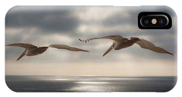 Pelicans At Sea IPhone Case