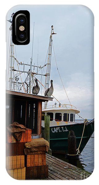 Pelicans Looking For Lunch IPhone Case