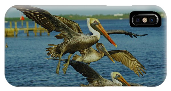 Pelicans Three Amigos IPhone Case