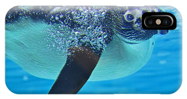 Penguin Dive IPhone Case