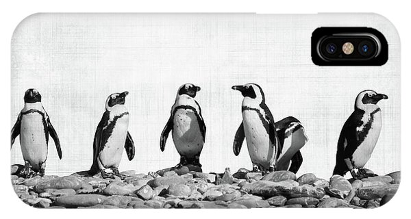 Penguin iPhone Case - Penguins by Delphimages Photo Creations