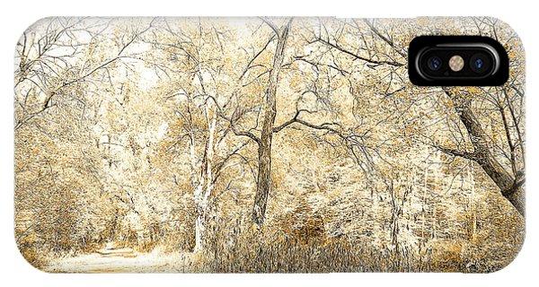 Pennsylvania Autumn Woods IPhone Case
