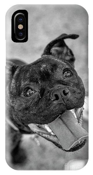 Penny - Dog Portrait IPhone Case