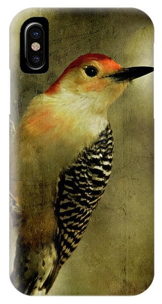 Avian iPhone Case - Perched And Ready - Weathered by Lana Trussell