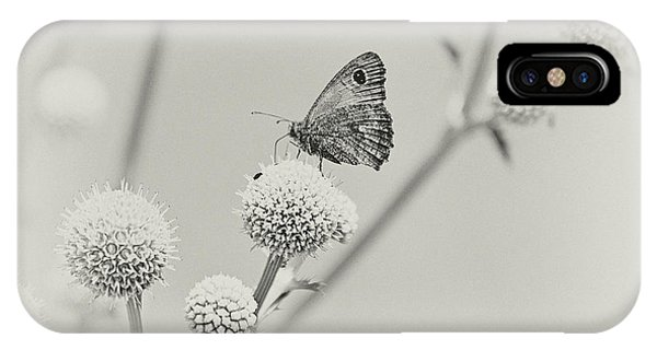 Perched Butterfly No. 255-2 IPhone Case