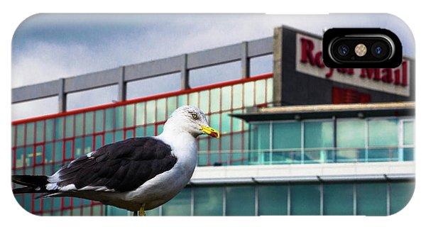 Perched Gull IPhone Case