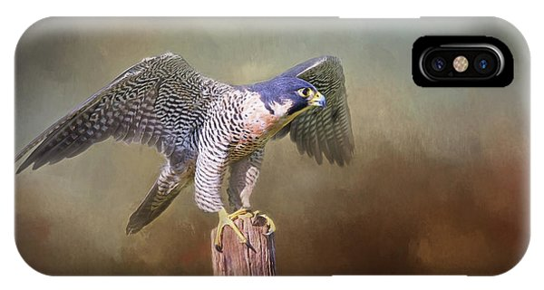 Peregrine Falcon Taking Flight IPhone Case