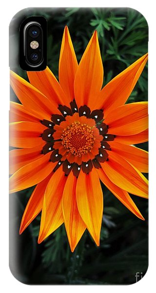 Perfect Flower  IPhone Case