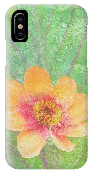 Peach iPhone Case - Perfect Peach by JQ Licensing