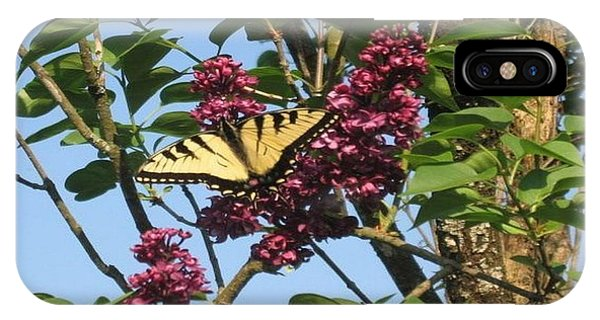 Yellow Swallowtail And Lilac IPhone Case