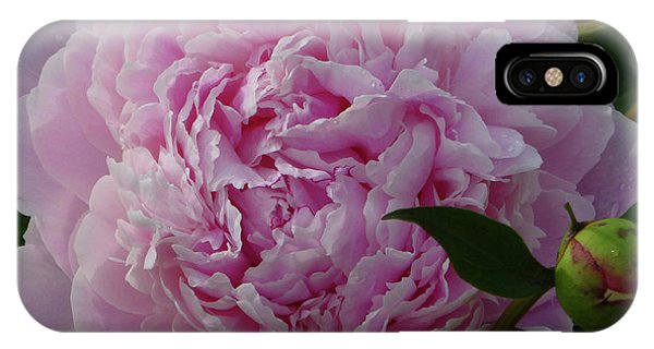 Perfection In Pink IPhone Case