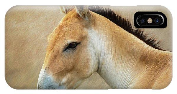 Donkey iPhone Case - Persian Onager by Tom Mc Nemar