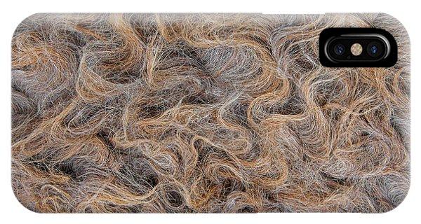 IPhone Case featuring the photograph Peruvian Burro Curls by Britt Runyon