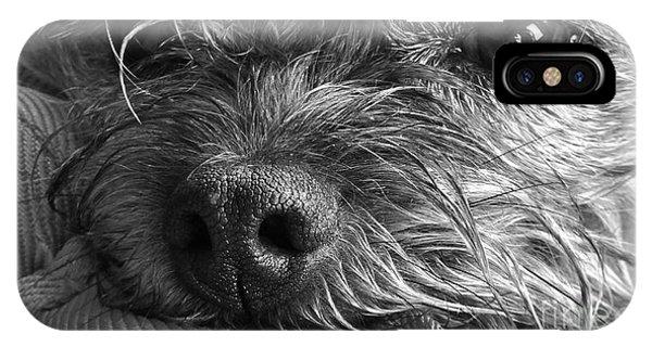 Pet Portrait - Puck II IPhone Case