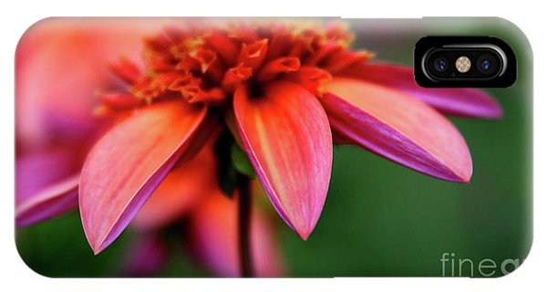 Petal Perfect IPhone Case