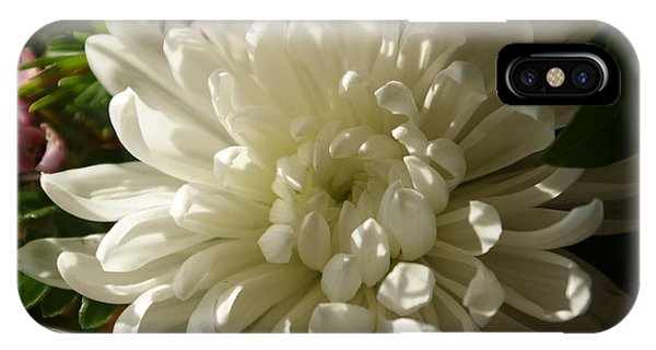 Petals Profusion IPhone Case
