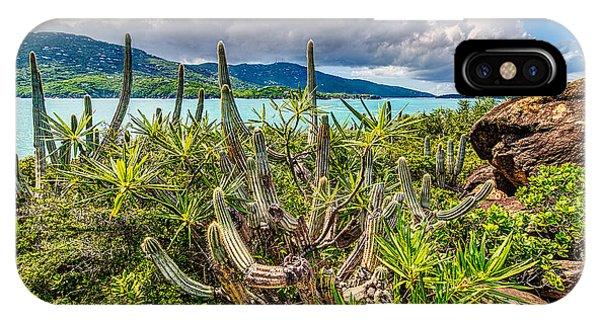 Peterborg Cactus IPhone Case