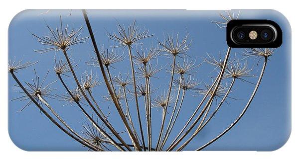 Petite Parasols IPhone Case