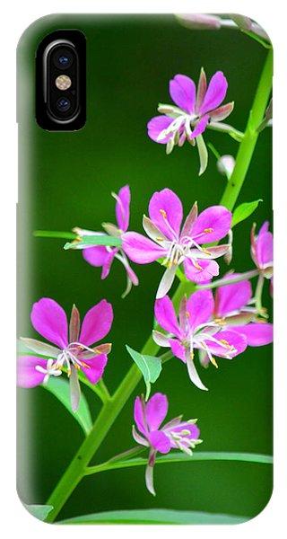 Petites Fleurs Violettes IPhone Case